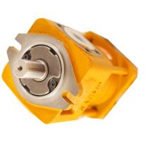 SAEMP NB2-C32F Internal Gear Pump for machine