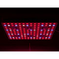 2020 Cree Full Spectrum COB Led Grow Light