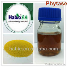 Thermostability phytase enzyme, patent product