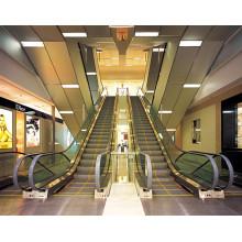 35 Degree 1000mm Step Width Escalator in Shopping Mall