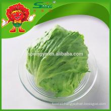 [Wholesale] Round Iceberg Lettuce romaine lettuce