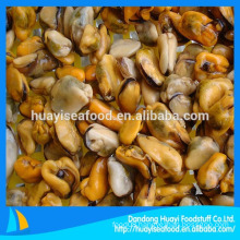 Supply hot sale shellfish frozen boiled mussel