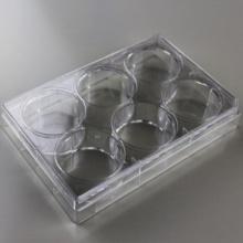 6 puits de la plaque de Culture cellulaire