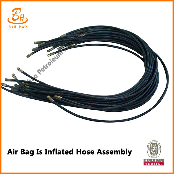 Air Bag Inflated Hose Assembly