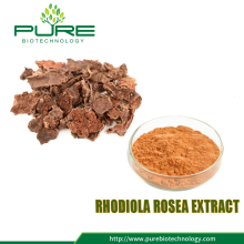 Rhodiola Rosea Extract Powder 3% -10% Salidroside