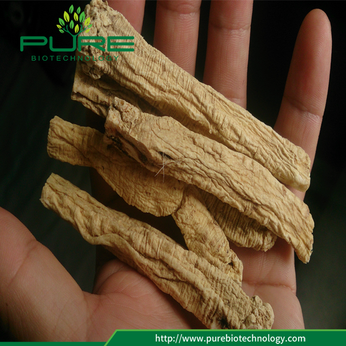 Herbal Medicine Dang Shen Dried Radix Codonopsis (4)