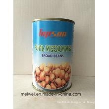 Köstliche Bohnen Dosen Broad Beans, Foul Medamins Broad Beans in Sole