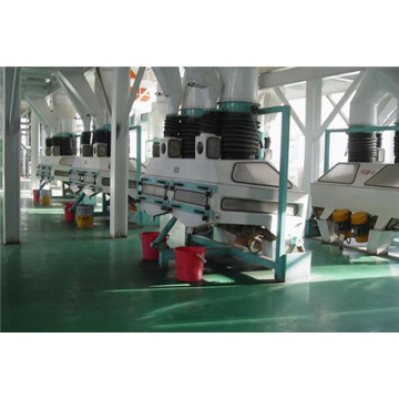 800 t / d Oilseed Pretreatment Line Produksi