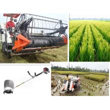 Vente de meilleurs récolte de riz en 2014