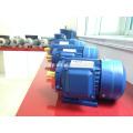 Y2-Serie kleine AC Gusseisen dreiphasig asynchrone Induktion Elektromotor