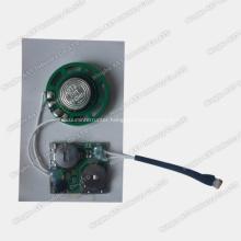 Sound Chip for Newspaper, Light Sensor Module, Sound Chip