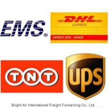 Entrega Noturna em Encomendas de Encomendas DHL UPS Express da China para a Argentina, Peru