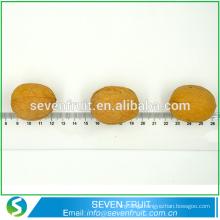Export bulk cheap chinese Yellow light Dried walnut fruit factory