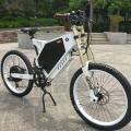 Bicicleta elétrica com pneu gordo aprovado pela CE
