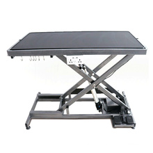Adjustable Hydraulic Electric Pet Grooming Table Dog Grooming Table