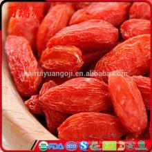 Bagas de Goji e diabetes medicações quanto goji bagas para comer um dia bagas de goji no mercado de alimentos integrais