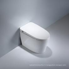 Toilette monobloc à compostage en céramique avec coup de pied