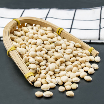 Best Price 100% pure Natural White lentils