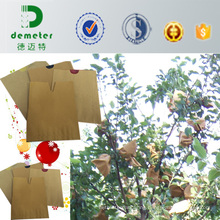 High Grade Composite Paper Breathability FUJI Apple Protection Bag Factory Price Good Quality to Prevent Pesticides Pollution with Outlet Entrance