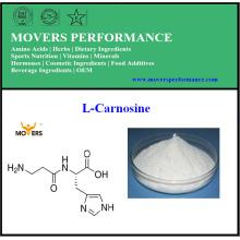 Reiner natürlicher heißer Verkauf hohe Qualität L-Carnosin