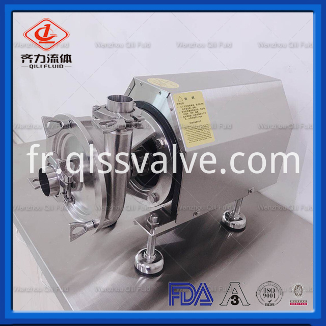 Stainless Steel Pump 1