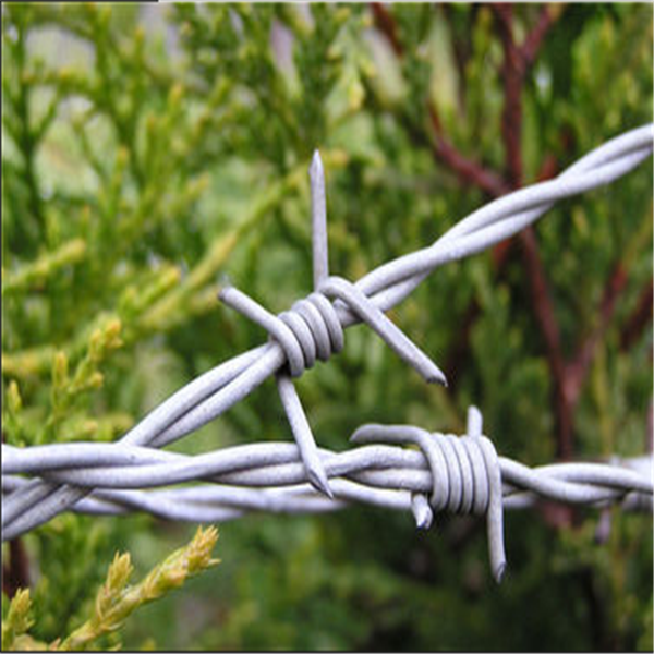 railway barbed wire