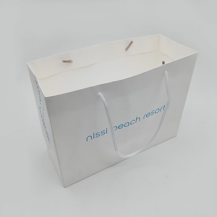 White Kraft Paper Bag