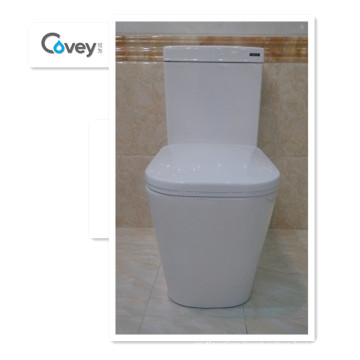 One-Piece Toilet with S-Trap&P-Trap Popular in Australia (A-6014)