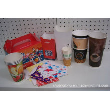 Paper Food Packing Box & Paer Cups Disposable Hot & Cold Cups