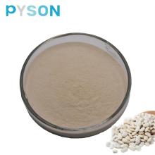 Extrakt aus weißen Kidneybohnen 1%HPLC