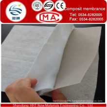 Waterproofing Geomembrane Thickness Within 3.0mm and Nonwoven Geotextile Weight/M2 Within 800G/M2 for The New Waterproofing Materials