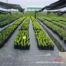 Tapis anti-mauvaises herbes de couverture de sol de jardin de pp, Chine Tapis de contrôle de mauvaise herbe d'agriculture bon marché