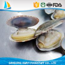 Frozen Short Neck Clam Meat, Chine, fabricant, fournisseur, exportateur