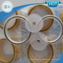 Pistão de poeira de alto desempenho Rod Spring Energized PTFE Lip Seal