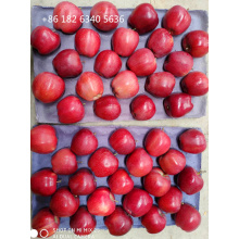 Polished by Machine of Huaniu Apple