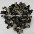 Schwarzer Pilz Auricularia Auricula Powder