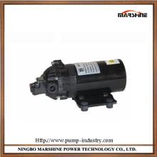 DC Mini diaphragm corrosion resistant water pumps
