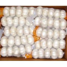 2015 Nova Colheita Pequena Embalagem Bag Embalagem Alho Branco Puro
