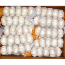 2015 New Crop Kleine Mesh Bag Verpackung Pure White Knoblauch