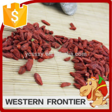 Purely natural green non pollution nourishing blood goji berry