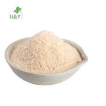 Hochwertiger Großhandel Kombucha Teepulver Instant powder