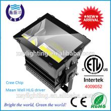 CETL DLC 1000W luz de inundación LED con driver meanwell