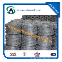 High Quality Cheap Barbed Wire (ADS-BW-2)