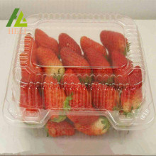 Clear Plastic Strawberry Fruit Container