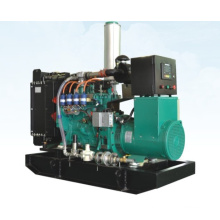 50kW Googol Water Cooled Emergency Gas Generator