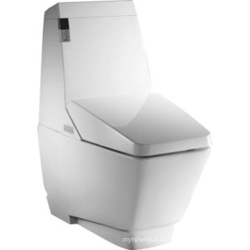 Badezimmer Wasser sparen intelligente Toilette (JN30701)