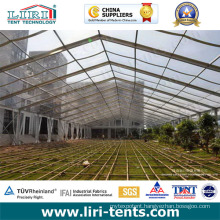 25m Insulation Clear Roof Tents Used as Greenhouse for Vegetables