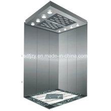 China Small Building Passenger Elevator