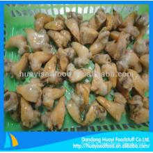 Viande de viande congelée dans les coquillages à vendre