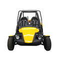 buggy de playa de gasolina 250cc 2 plazas quad adulto